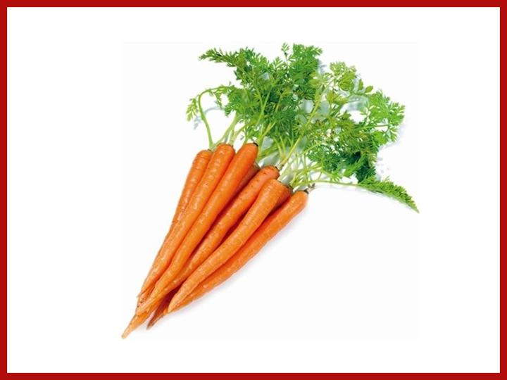 Wofür sind Karotten gut? – Ist Karotte überhaupt gesund?